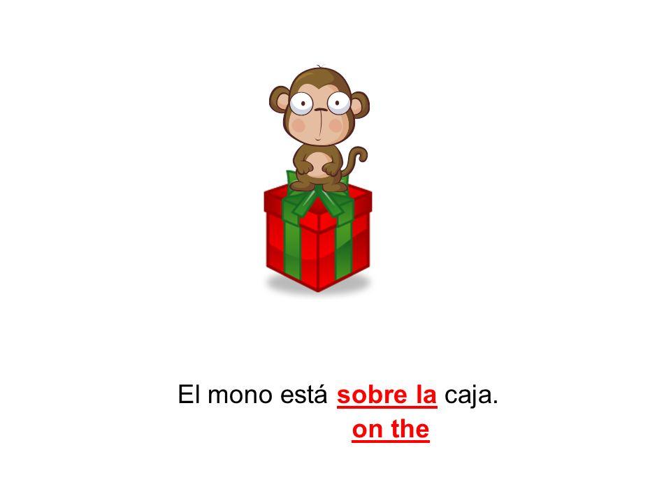 El mono está sobre la caja.