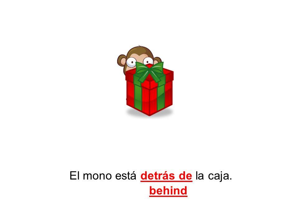 El mono está detrás de la caja.