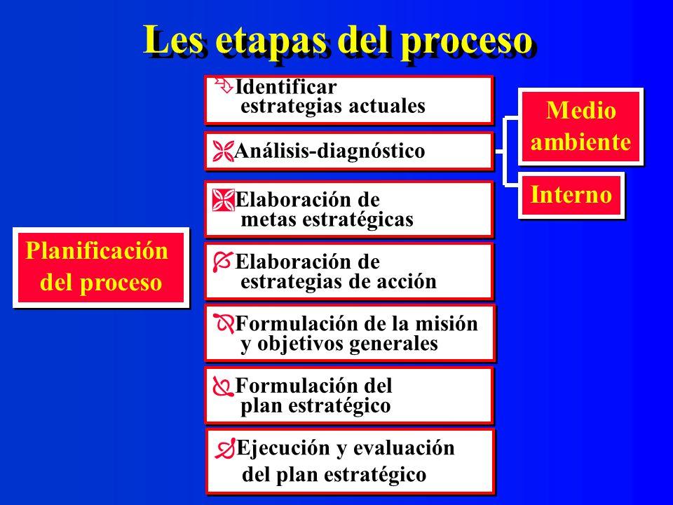 Les etapas del proceso Medio ambiente Interno Planificación