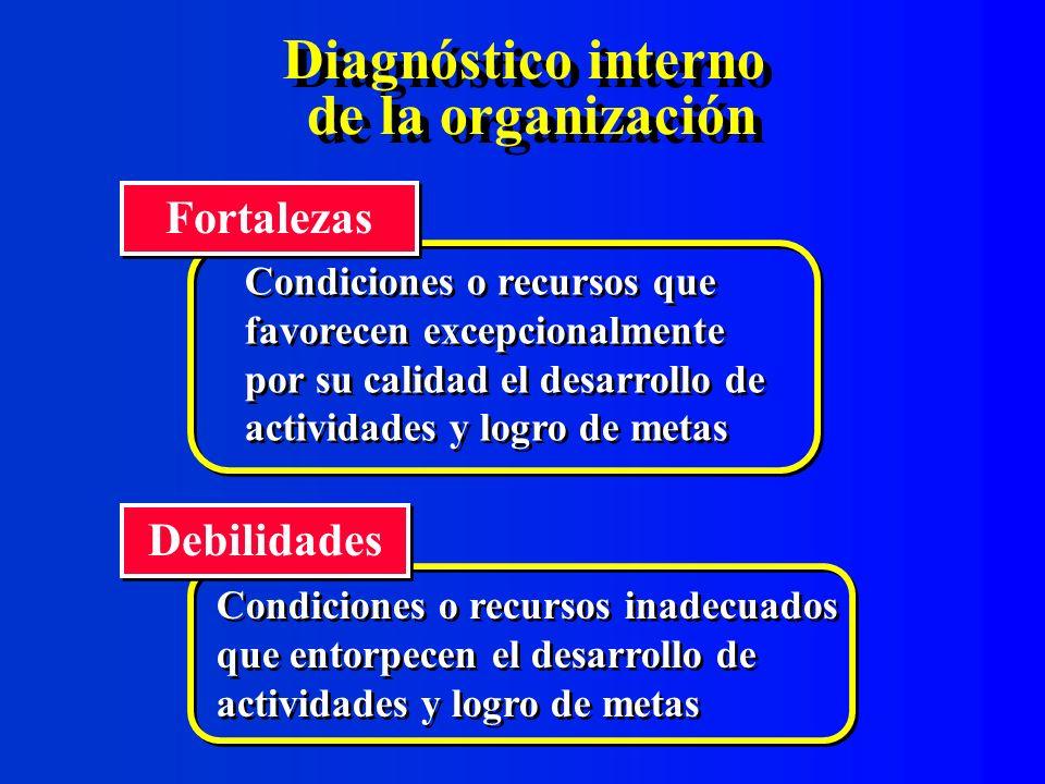 Diagnóstico interno de la organización