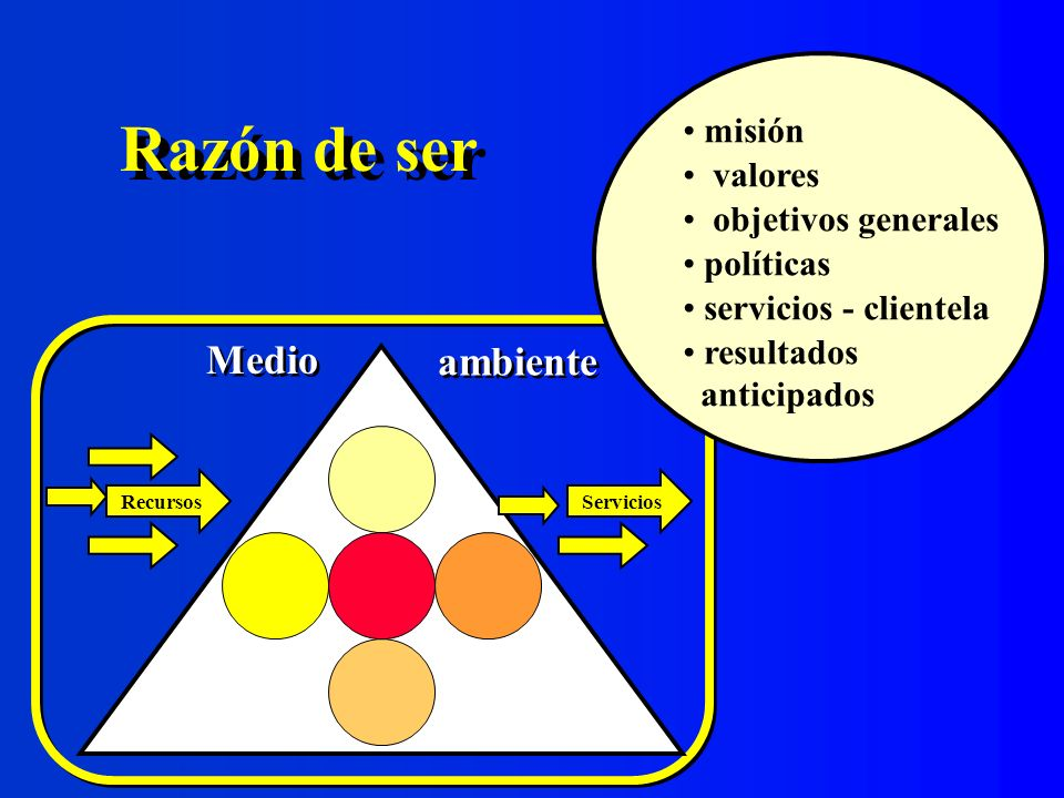 Razón de ser Medio ambiente misión valores objetivos generales