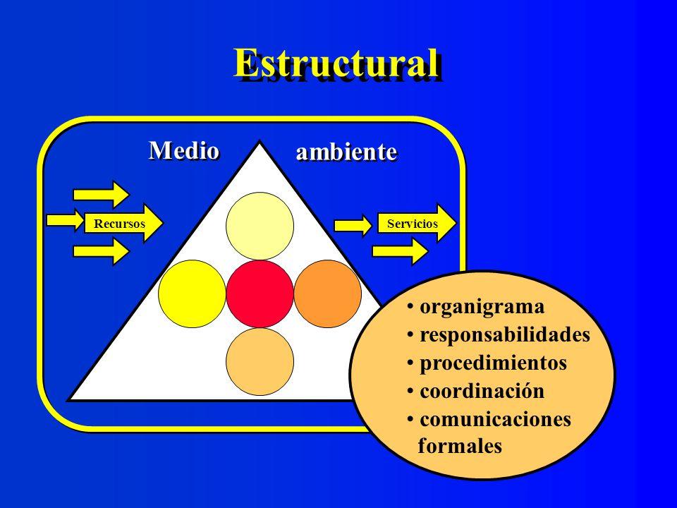 Estructural Medio ambiente organigrama responsabilidades