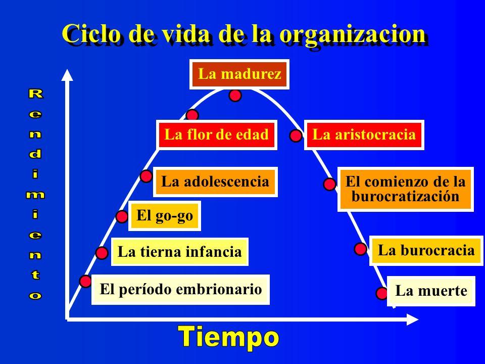 Ciclo de vida de la organizacion