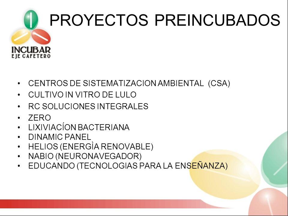 PROYECTOS PREINCUBADOS