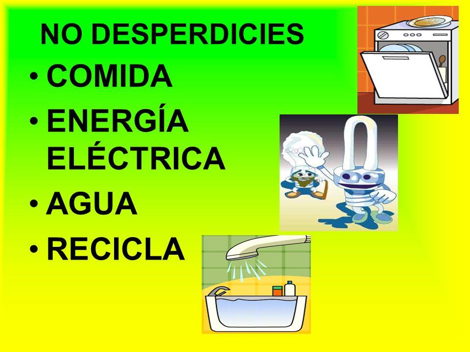 NO DESPERDICIES COMIDA ENERGÍA ELÉCTRICA AGUA RECICLA