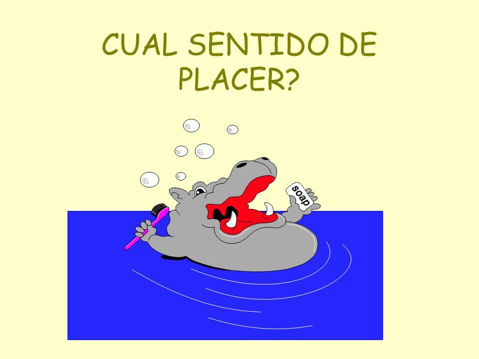 CUAL SENTIDO DE PLACER