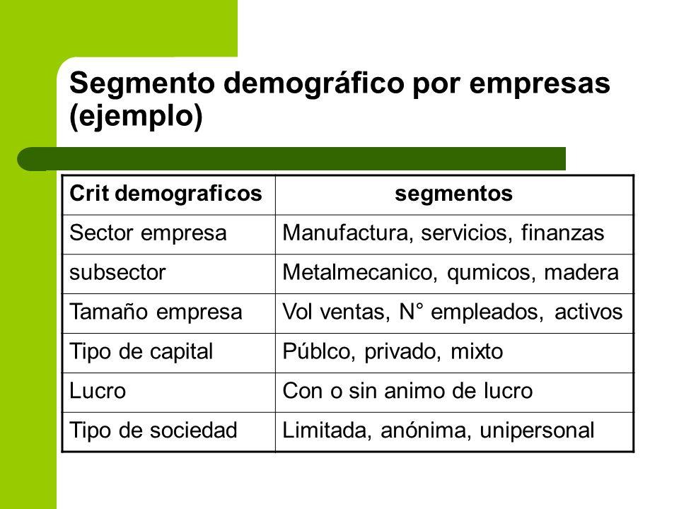 Segmento demográfico por empresas (ejemplo)