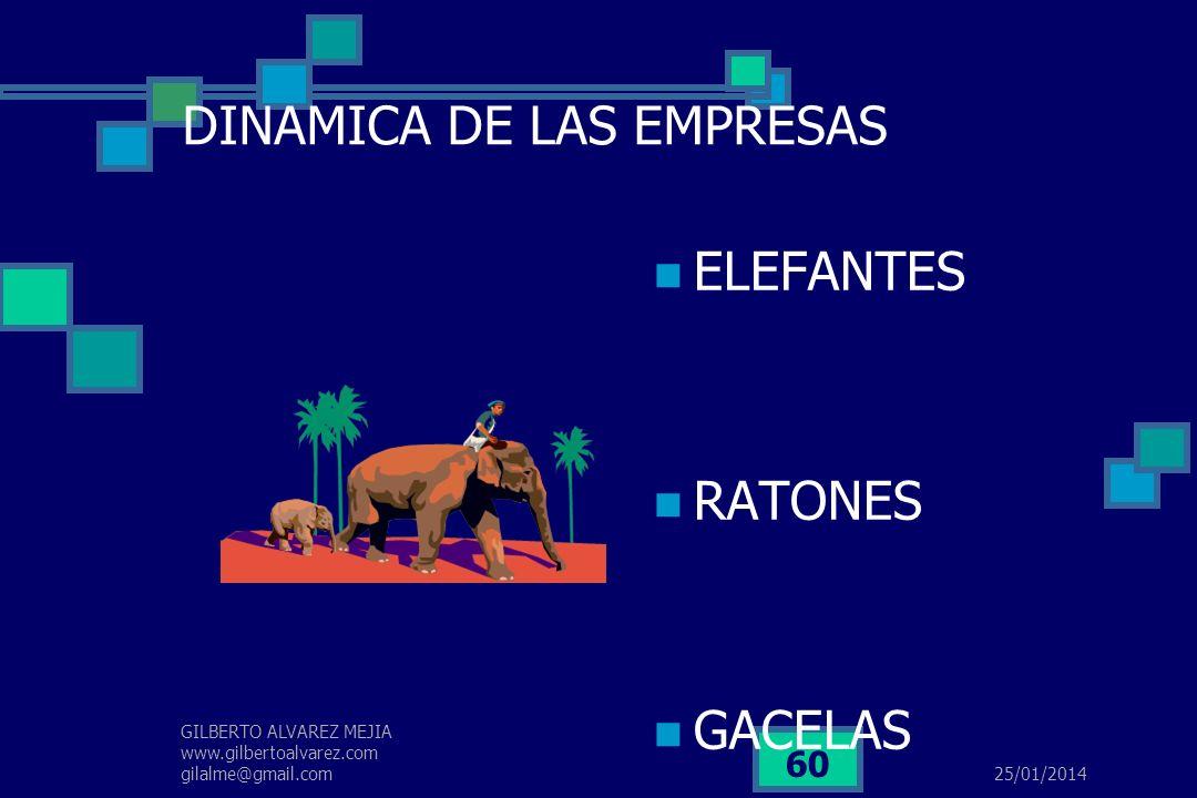 DINAMICA DE LAS EMPRESAS