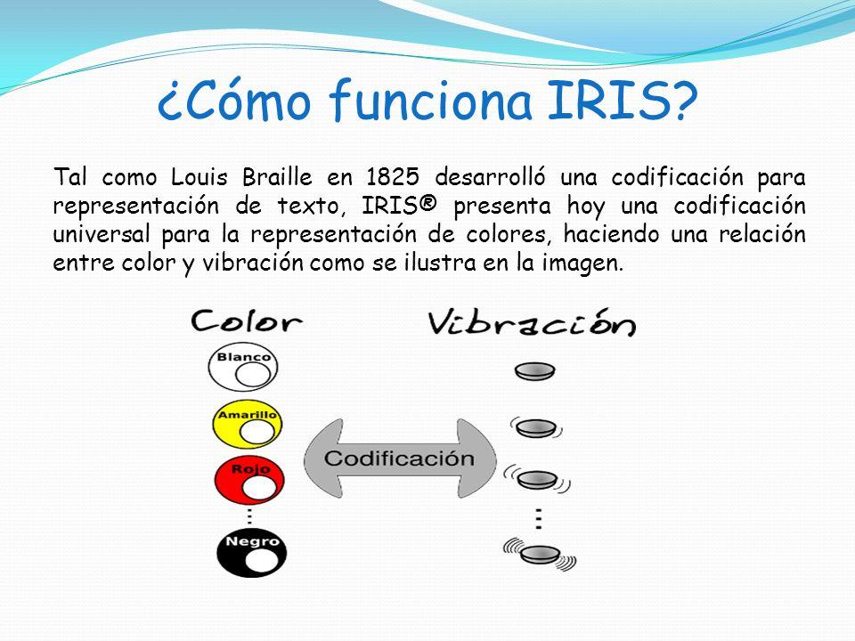 ¿Cómo funciona IRIS