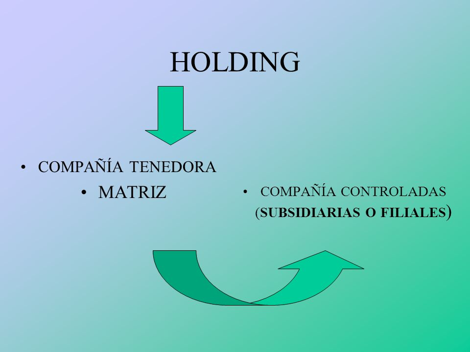COMPAÑÍA CONTROLADAS (SUBSIDIARIAS O FILIALES)