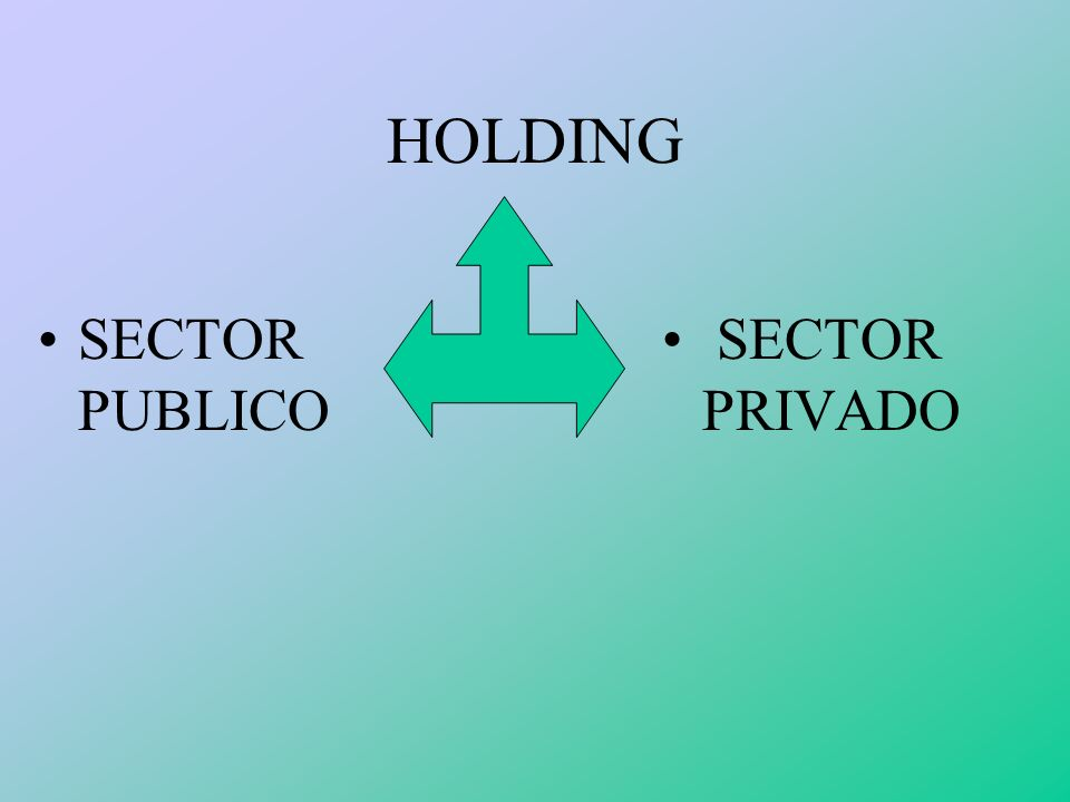 HOLDING SECTOR PUBLICO SECTOR PRIVADO