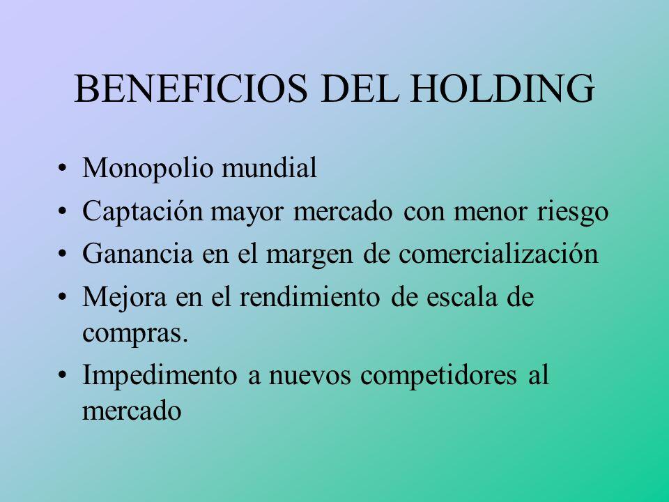 BENEFICIOS DEL HOLDING