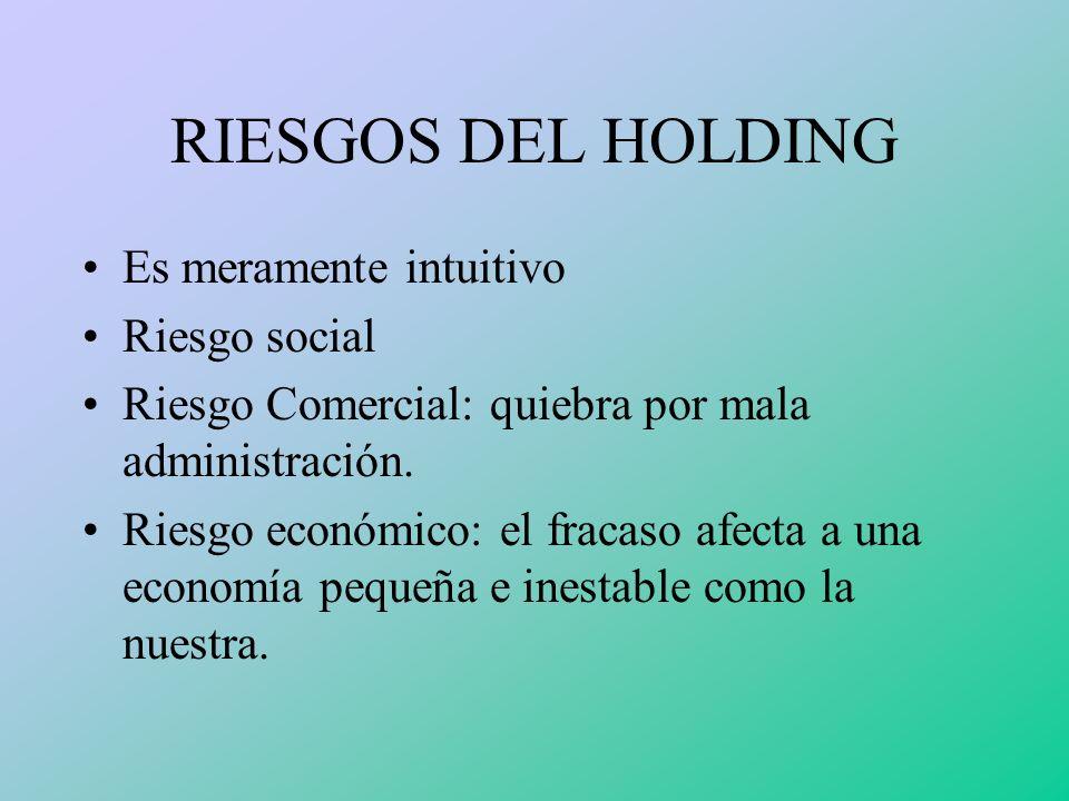 RIESGOS DEL HOLDING Es meramente intuitivo Riesgo social