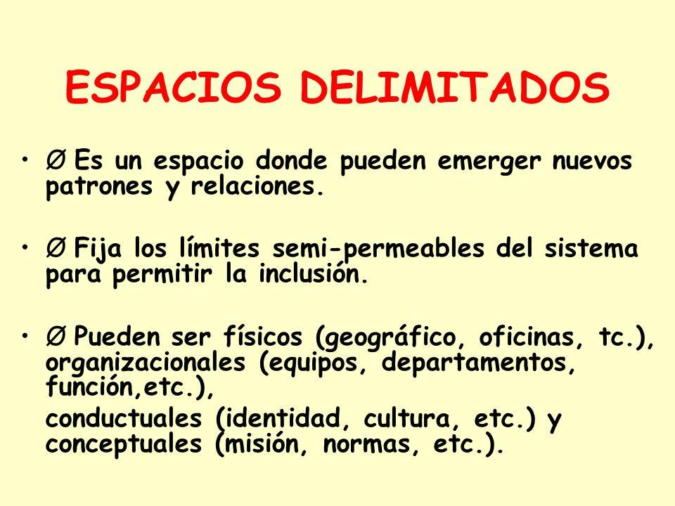 ESPACIOS DELIMITADOSØ Es un espacio donde pueden emerger nuevos patrones y relaciones.