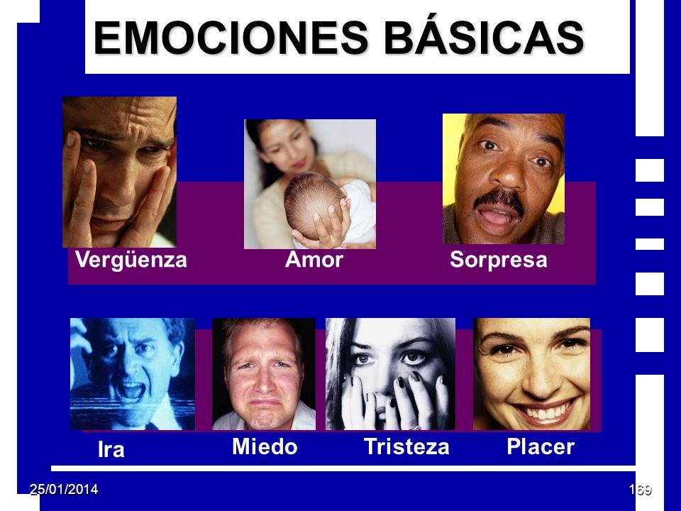 EMOCIONES BÁSICAS Vergüenza Amor Sorpresa Ira Miedo Tristeza Placer