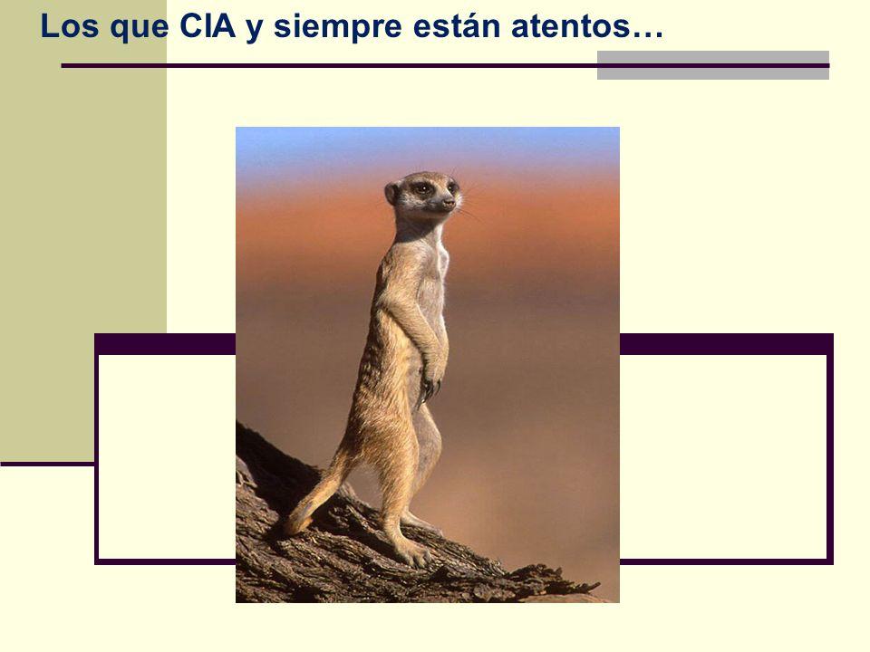 Los que CIA y siempre están atentos…