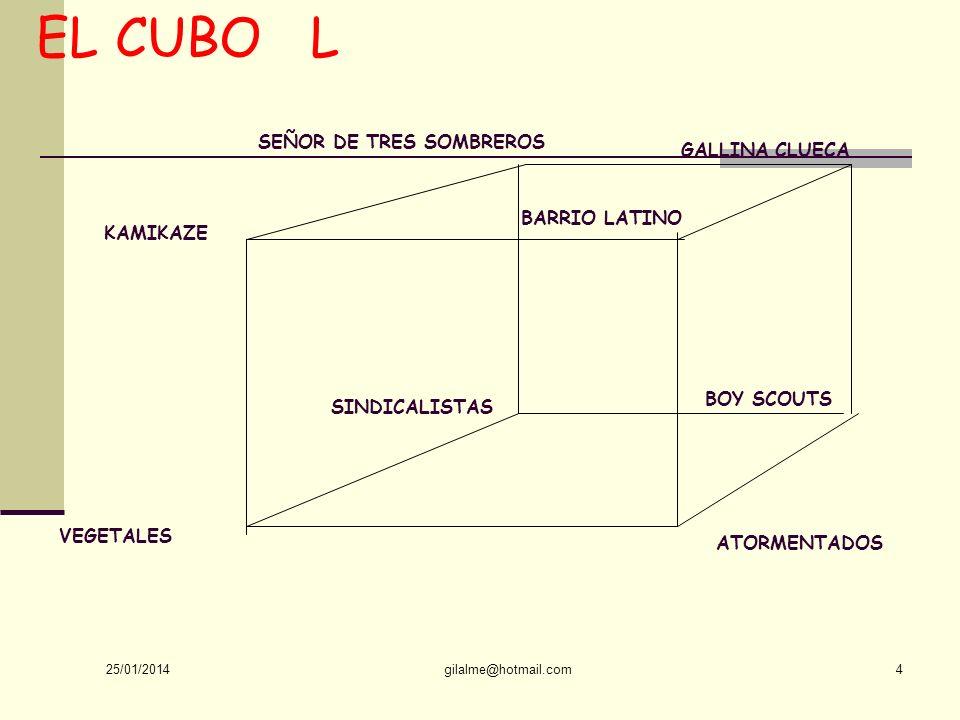 EL CUBO L SEÑOR DE TRES SOMBREROS GALLINA CLUECA BARRIO LATINO