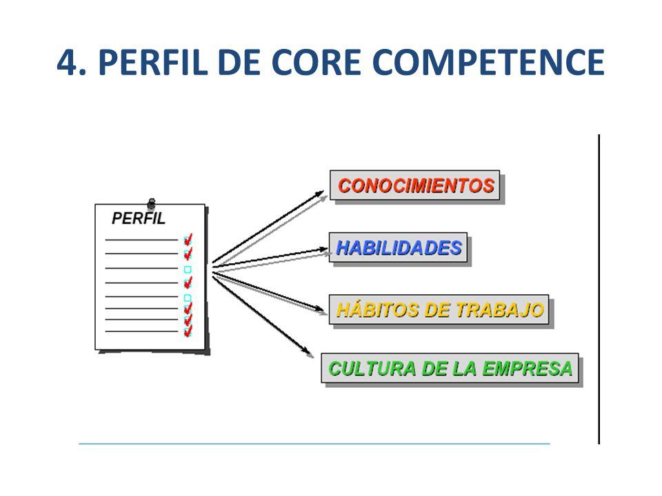 4. PERFIL DE CORE COMPETENCE
