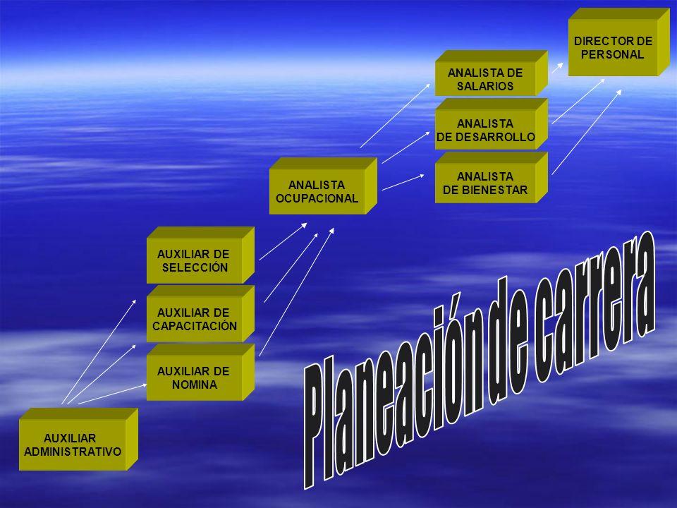 Planeación de carrera DIRECTOR DE PERSONAL ANALISTA DE SALARIOS