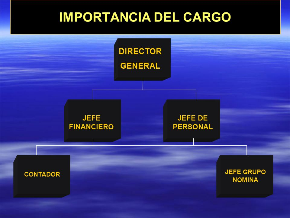 IMPORTANCIA DEL CARGO DIRECTOR GENERAL JEFE FINANCIERO