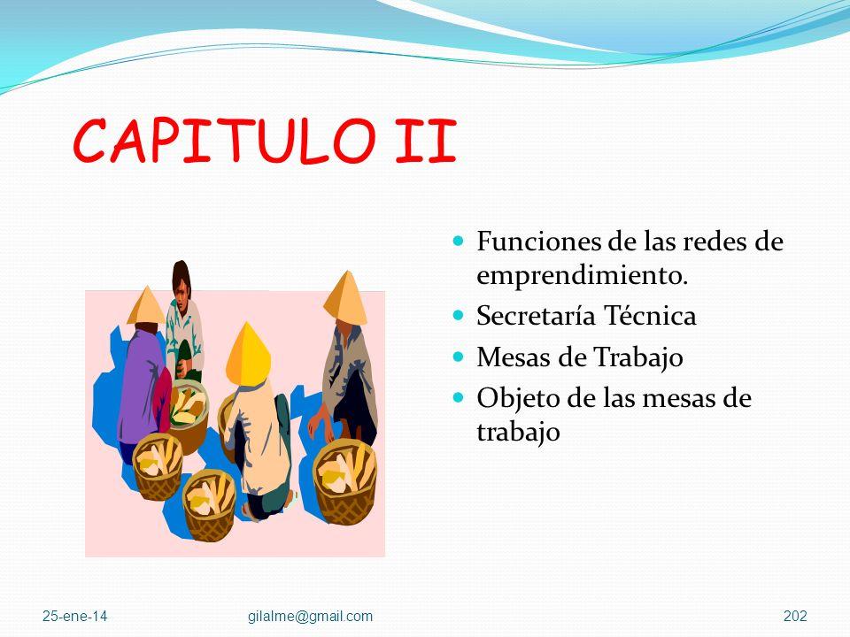 CAPITULO II Funciones de las redes de emprendimiento.