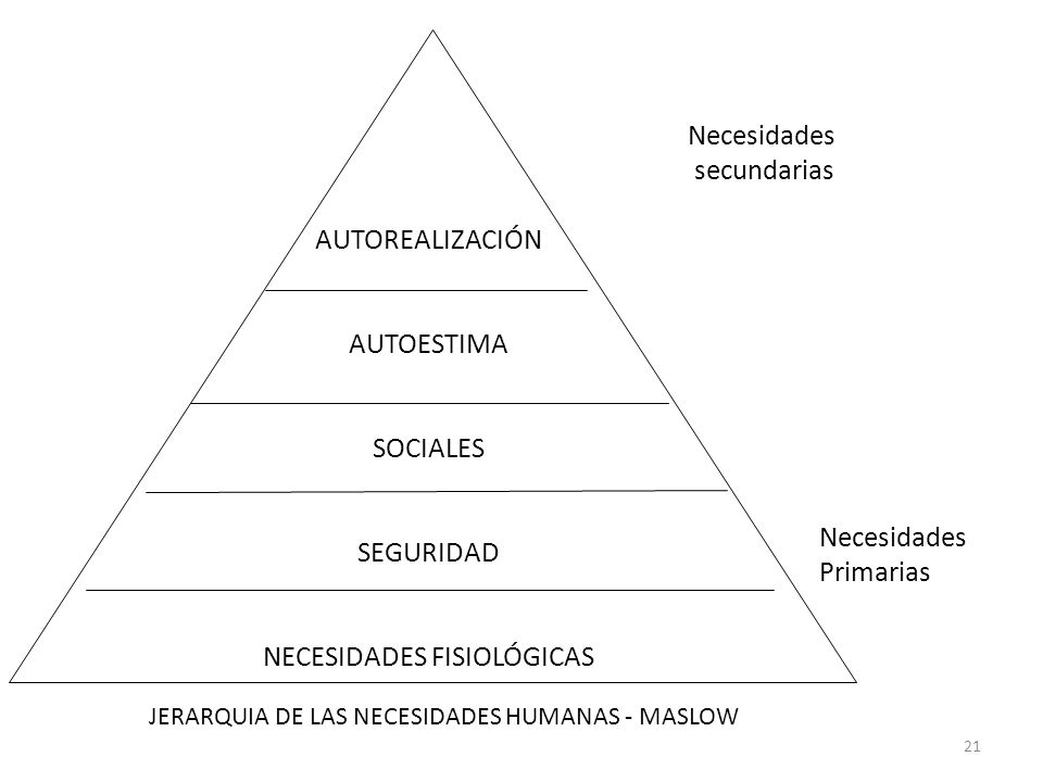 NECESIDADES FISIOLÓGICAS