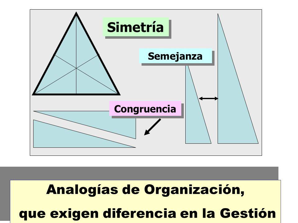 Analogías de Organización, que exigen diferencia en la Gestión
