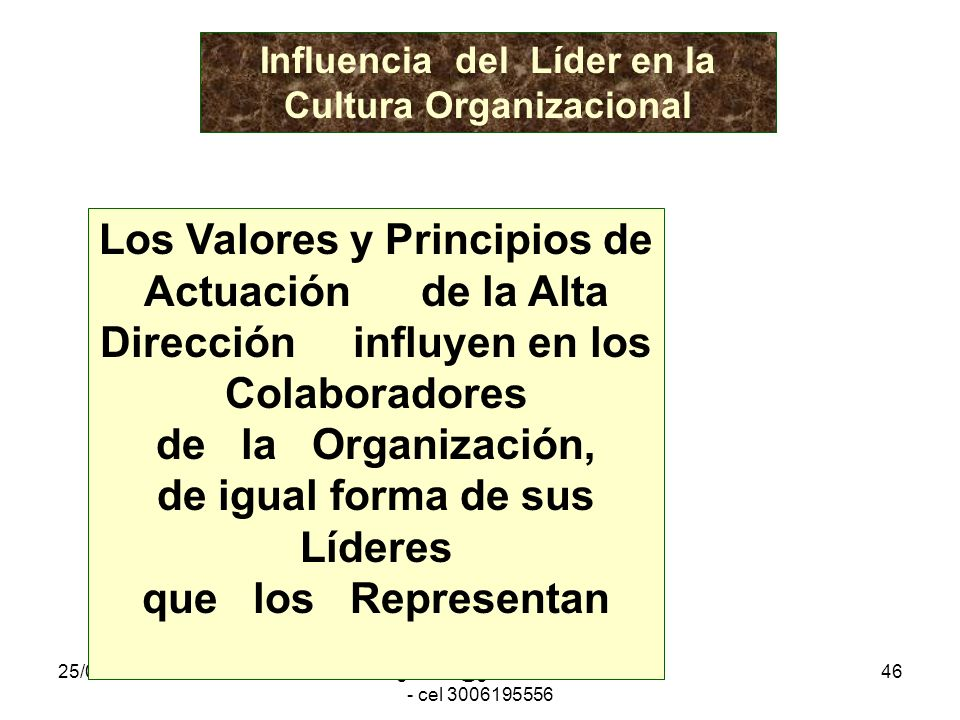 Influencia del Líder en la Cultura Organizacional