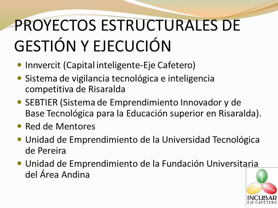 PROYECTOS ESTRUCTURALES DE GESTIÓN Y EJECUCIÓN