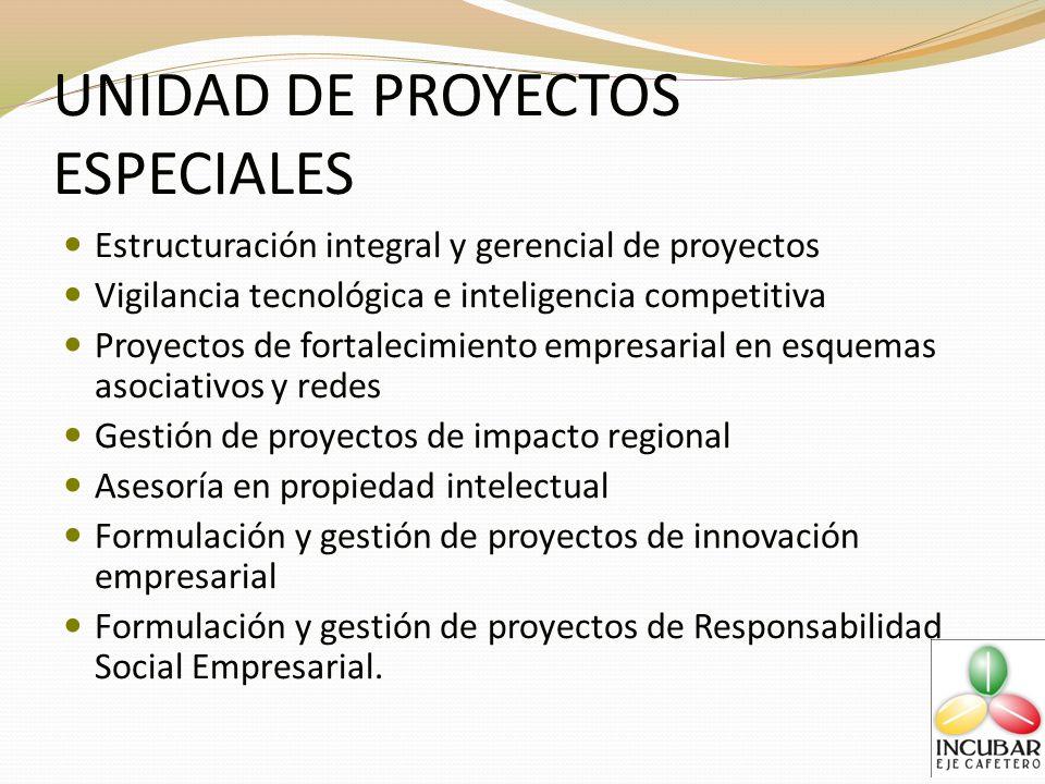UNIDAD DE PROYECTOS ESPECIALES