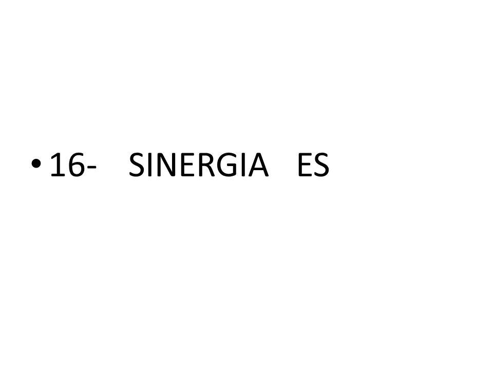 16- SINERGIA ES