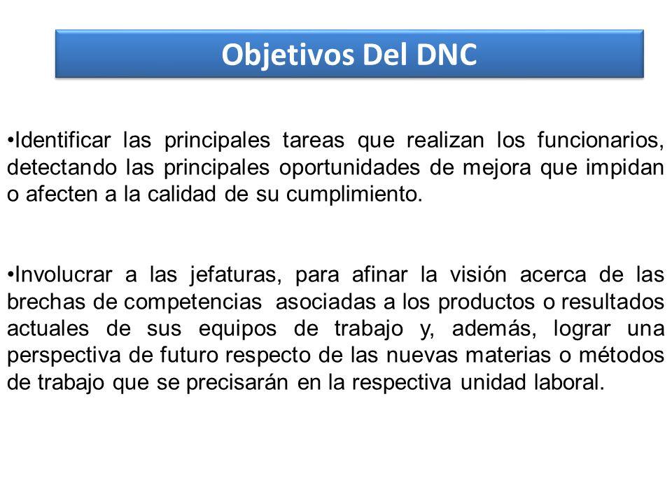 Objetivos Del DNC