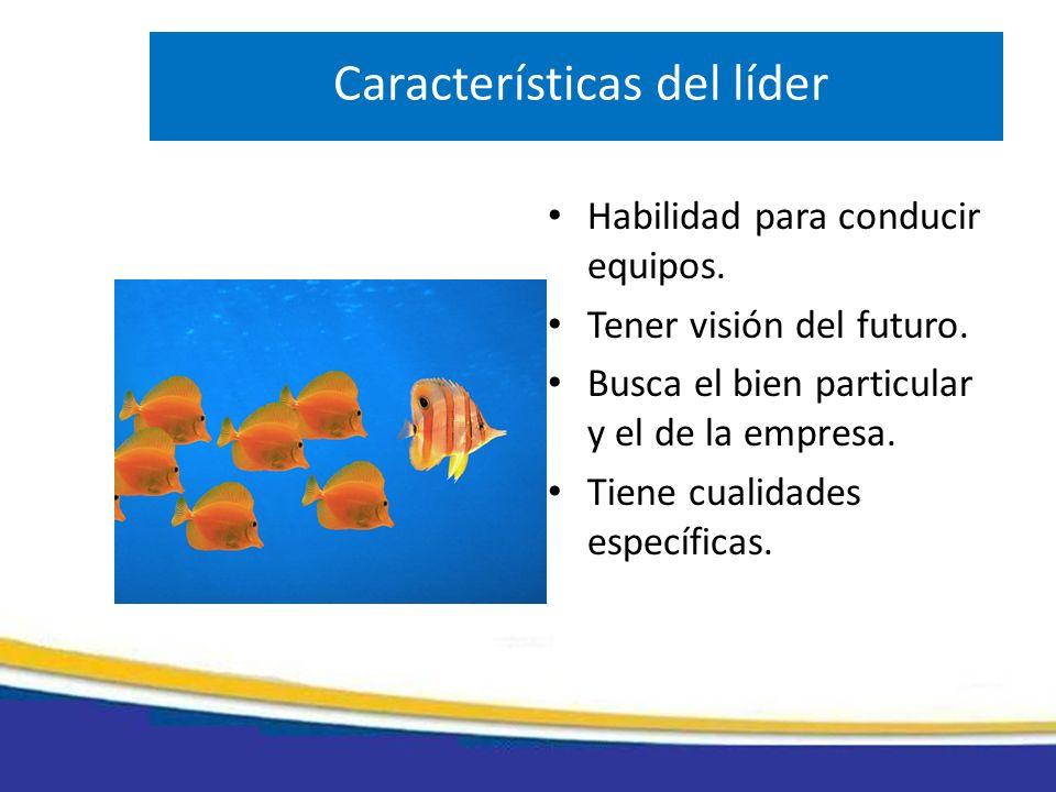 Características del líder