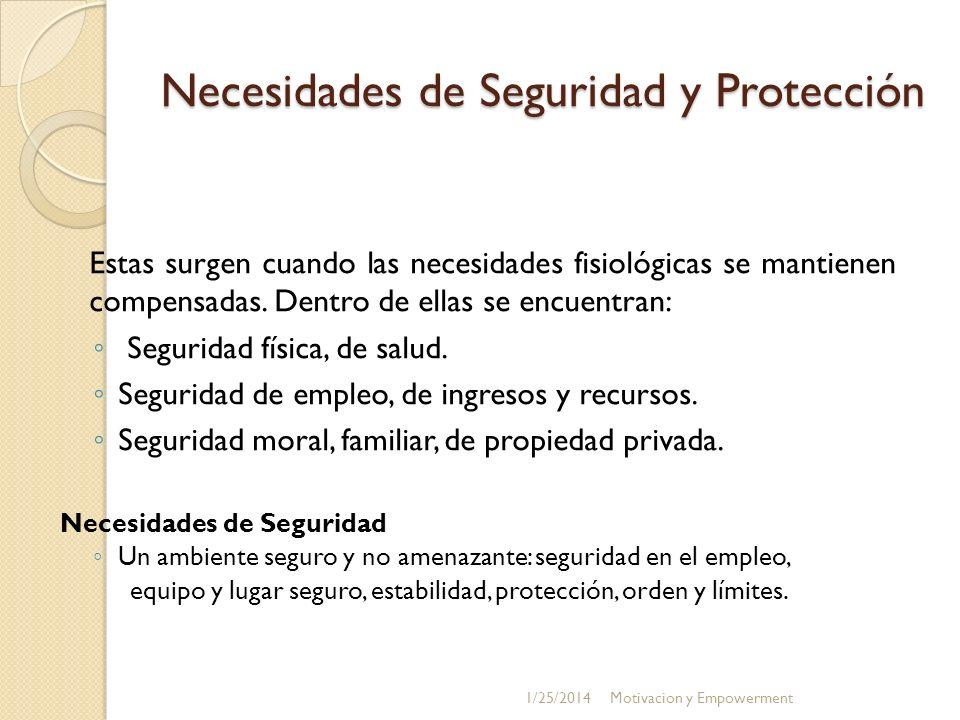 Necesidades de Seguridad y Protección