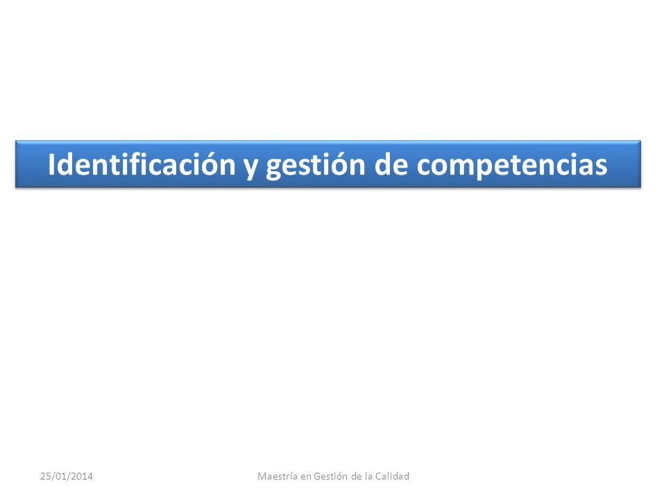 Identificación y gestión de competencias