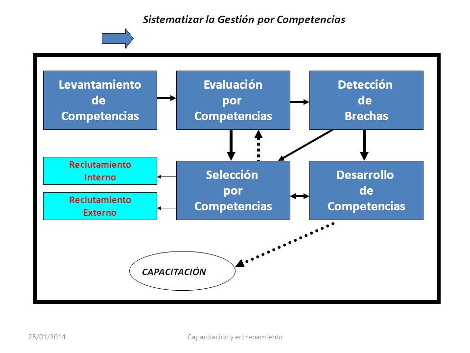 Sistematizar la Gestión por Competencias