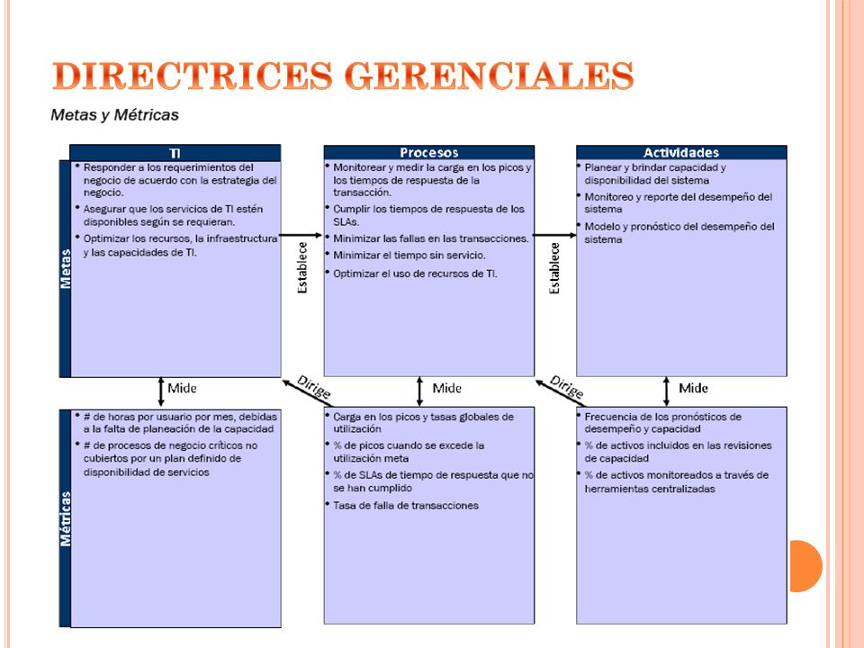 DIRECTRICES GERENCIALES
