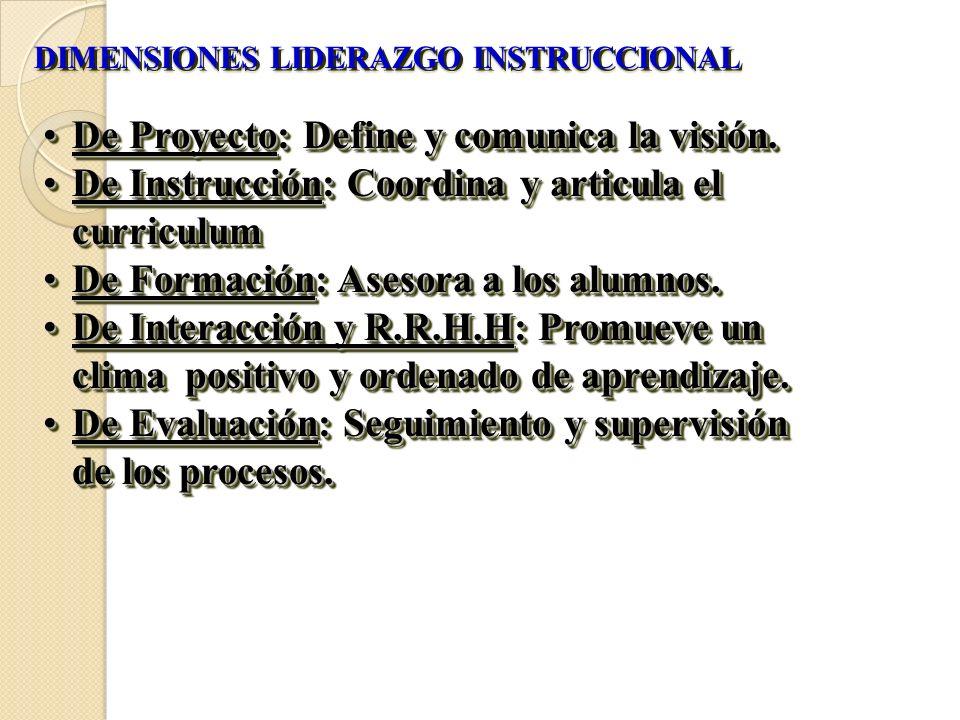 DIMENSIONES LIDERAZGO INSTRUCCIONAL