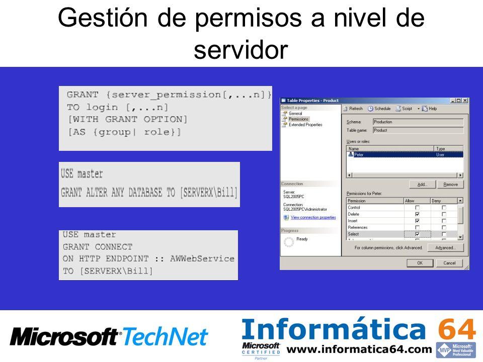 Gestión de permisos a nivel de servidor