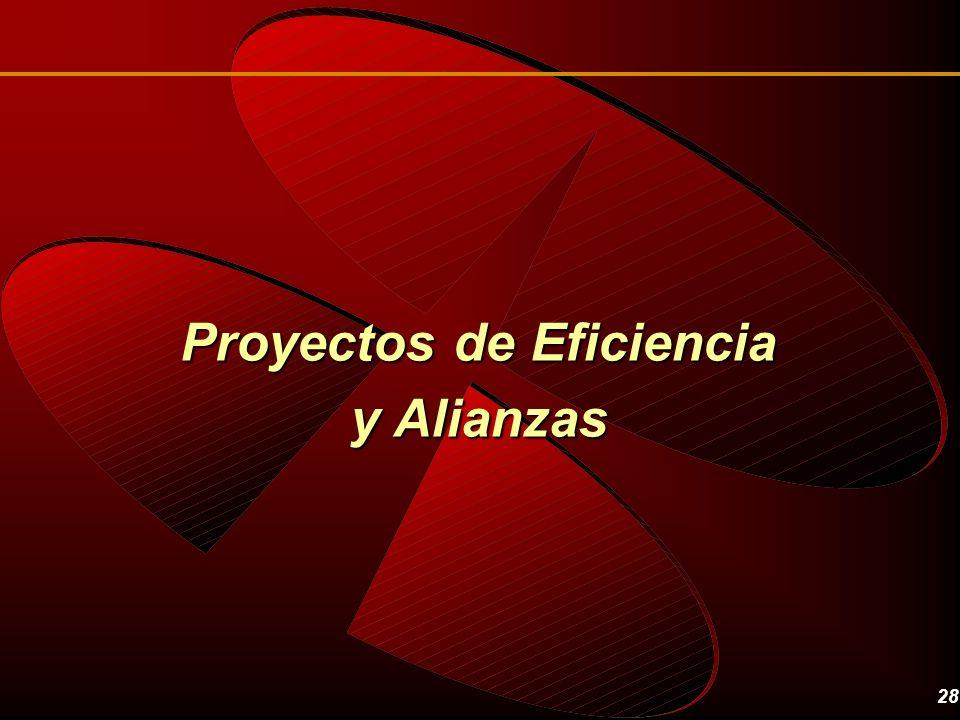 Proyectos de Eficiencia y Alianzas