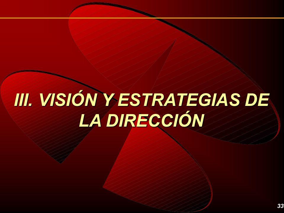 III. VISIÓN Y ESTRATEGIAS DE LA DIRECCIÓN