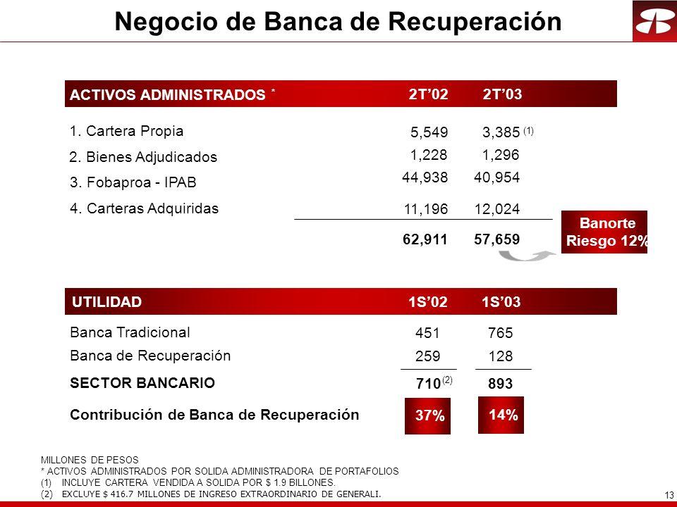 Negocio de Banca de Recuperación