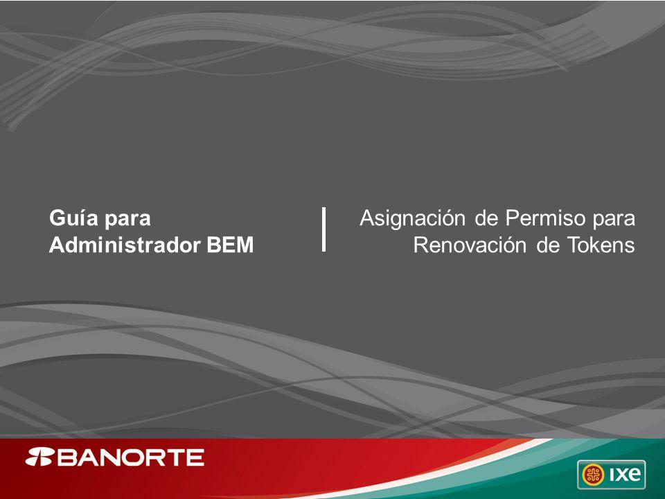 Guía para Administrador BEM