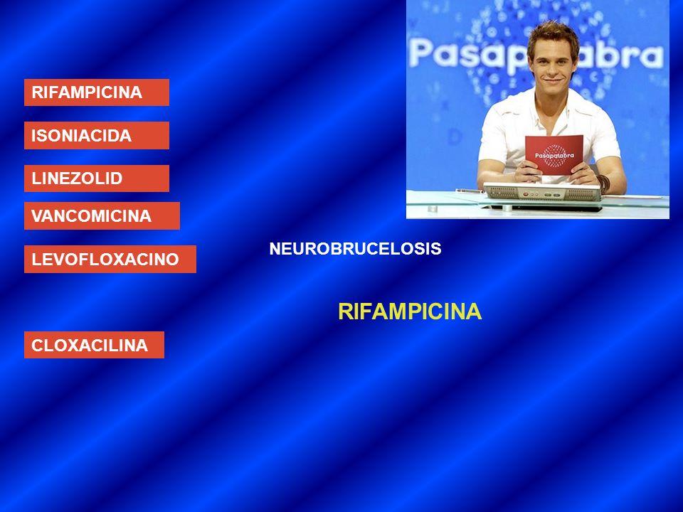 RIFAMPICINA RIFAMPICINA ISONIACIDA LINEZOLID VANCOMICINA
