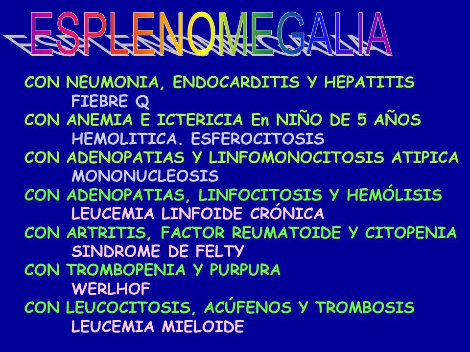 ESPLENOMEGALIA CON NEUMONIA, ENDOCARDITIS Y HEPATITIS FIEBRE Q