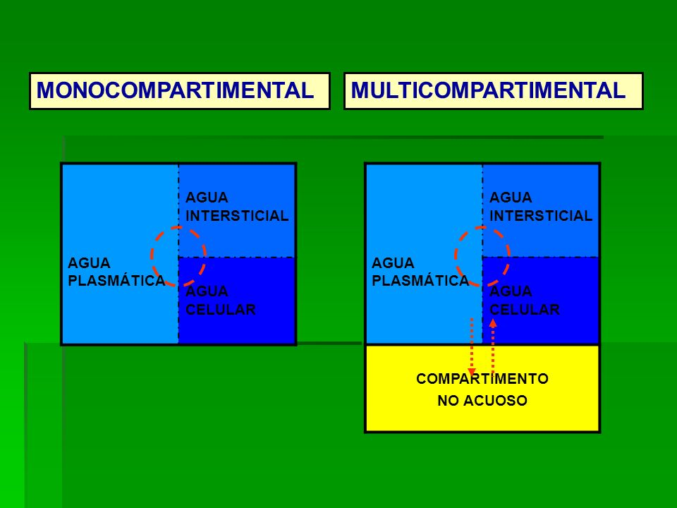 MONOCOMPARTIMENTAL MULTICOMPARTIMENTAL AGUA PLASMÁTICA