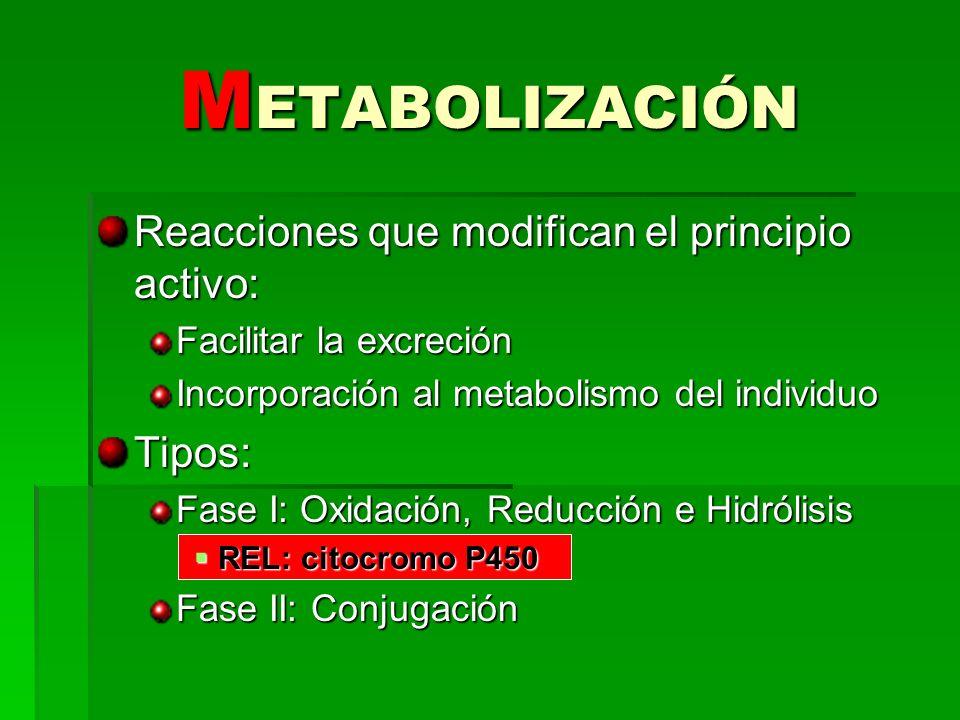 METABOLIZACIÓN Reacciones que modifican el principio activo: Tipos: