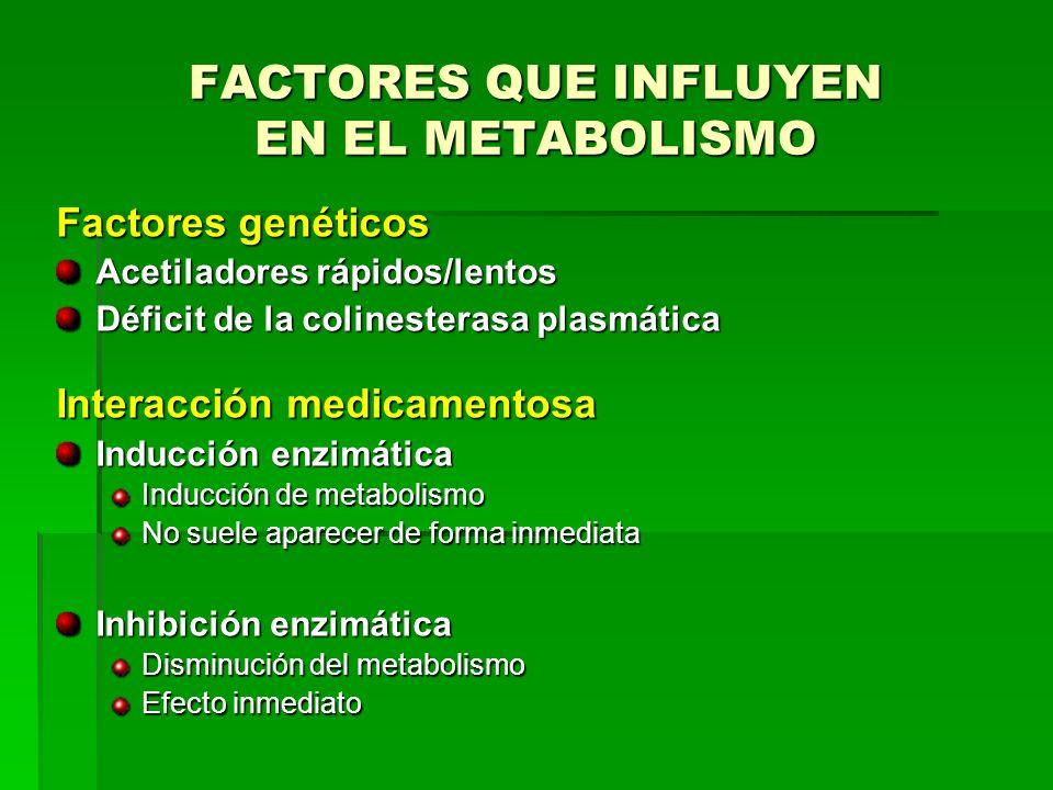 FACTORES QUE INFLUYEN EN EL METABOLISMO