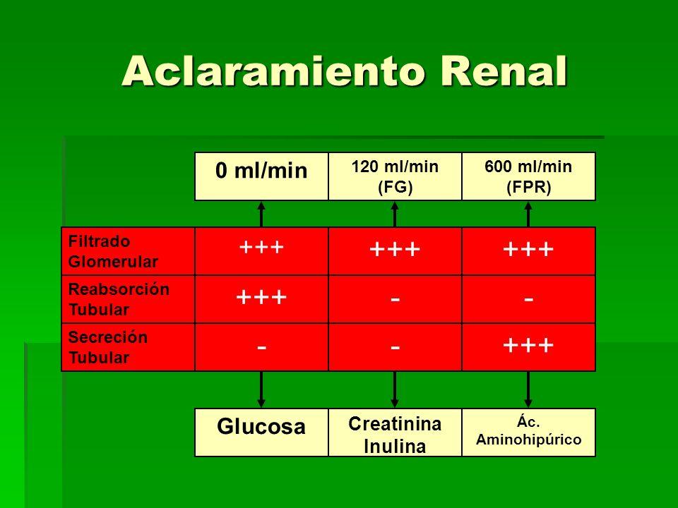 Aclaramiento Renal +++ +++ +++ - - - - +++ +++ 0 ml/min Glucosa