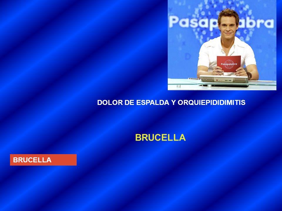 DOLOR DE ESPALDA Y ORQUIEPIDIDIMITIS